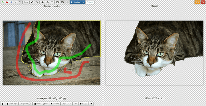 clipping-magic-red-and-green-line-e1601311879736