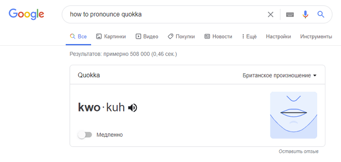 google-how-to-pronounce-quokka